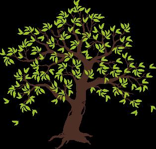 illistration of tree